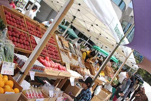 Farmer's Market(ファーマーズマーケット) @ UNU(国連大学前) :生産者の方とも直接話ができます