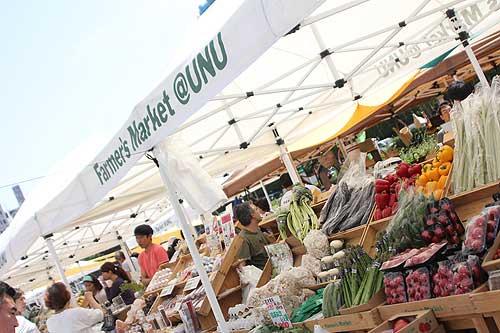 Farmer's Market(ファーマーズマーケット) @ UNU(国連大学前) :新鮮野菜などがずらり